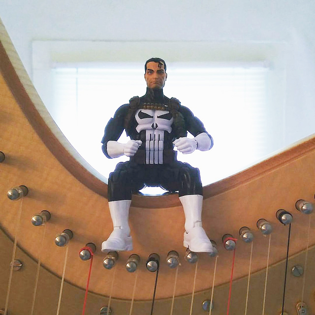 Punisher sitting right on top of My Harp Grover.